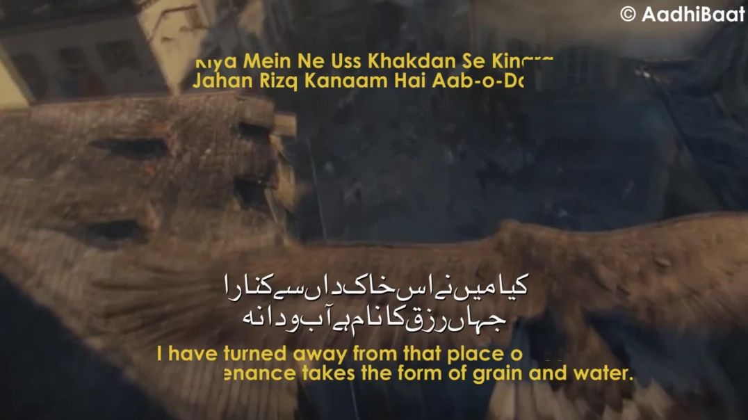 Bal-e-Jibril- 176 - The Falcon - Shaheen - Allama Iqbal - Iqbaliyat - AadhiBaat